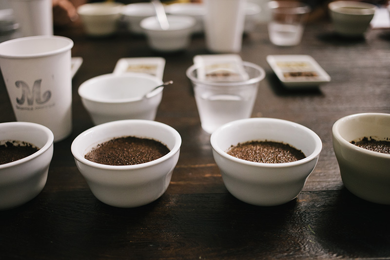 Coffee Cupping 4