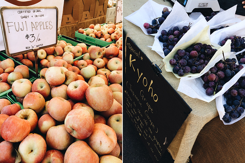 farmers market - fruits